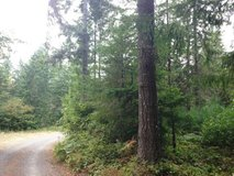Private, Gated, Ready to Build! Bald Hill in Fort Lewis, Washington